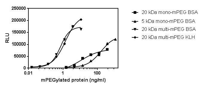Figure 2. Reactivity of mono- and multi-mPEGylated proteins in the MPEG-SP SPARCL assay.